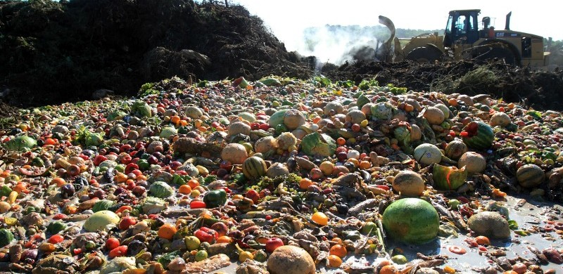 6 EASY WAYS TO REDUCE YOUR FOOD WASTE|ko-ecolife