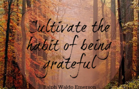 PRACTICE GRATITUDE DAILY FOR HAPPIER, HEALTHIER LIFE!