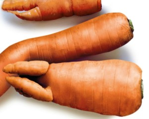 7 EASY WAYS TO REDUCE YOUR FOOD WASTE|Imperfect-produce|ko-ecolife