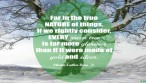 Quote-winter-tree-gold-silver-martin-luther-king|ko-kidz-blog