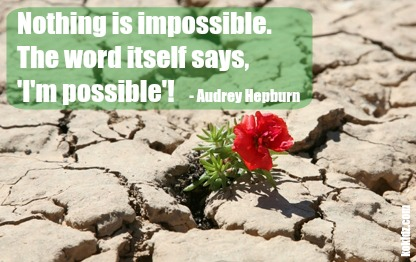Monday-motivation-im-possible-quote-red-flower-growing-out-of-rocks