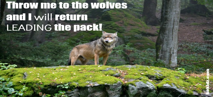 wolf-pack-leader-quote|monday-motivation