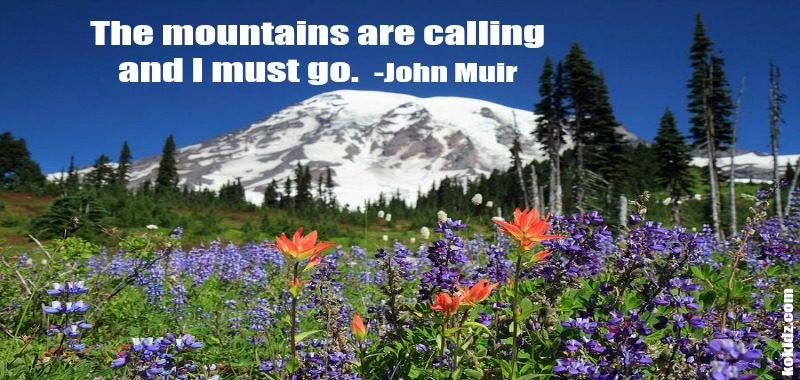 mount-rainier-wildflowers-mountains-QUOTE-John-Muir-ko-kidz-The-POWCH
