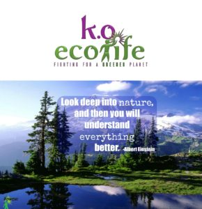 happy-earth-day-koecolife-the-powch-save-20%