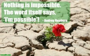 Monday-motivation-meditation-im-possible-audrey-hepburn-quote-red-flower-growing-out-of-rocks-ko-ecolife