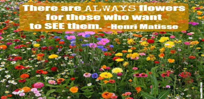 flower-field-matisse-quote-MONDAY-MEDITATION-MONDAY-MOTIVATION