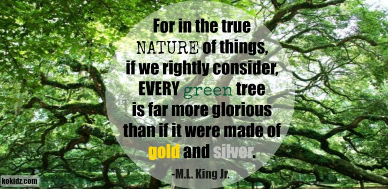 MLK-quote- Golden-solitary-green-tree-ko-kidz-ko-ecolife
